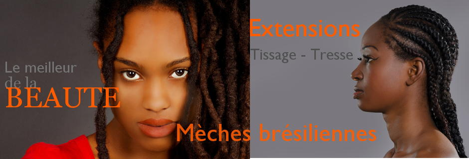 Diaop4-fashion-beaute-coiffure-afro-tmeche-bresilienne-extension-cheveux.jpg